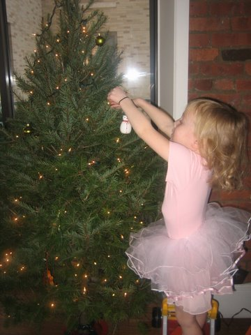 dylan-decorates-the-tree.jpg